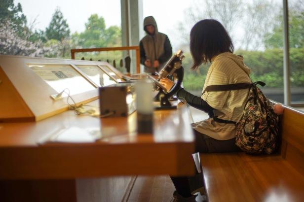 ayumi and alon natural museum