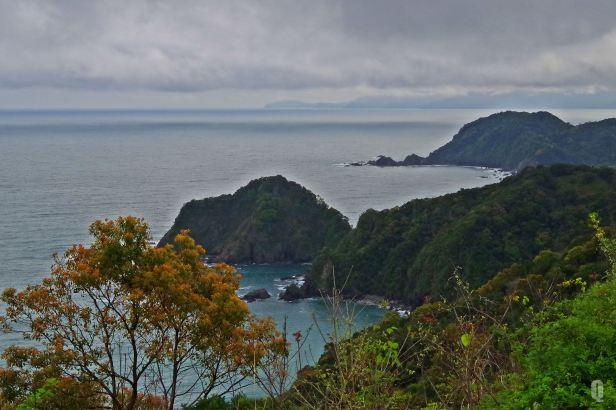 kochi sea view 3